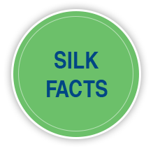 silk facts